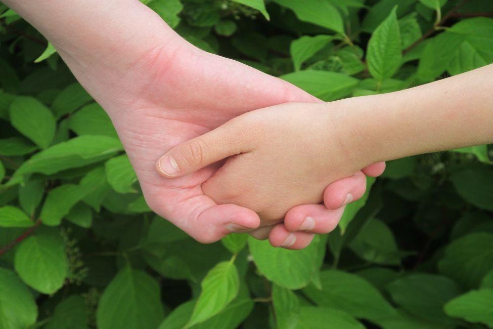 Dwie trzymające się ręce na tle zielonych liści